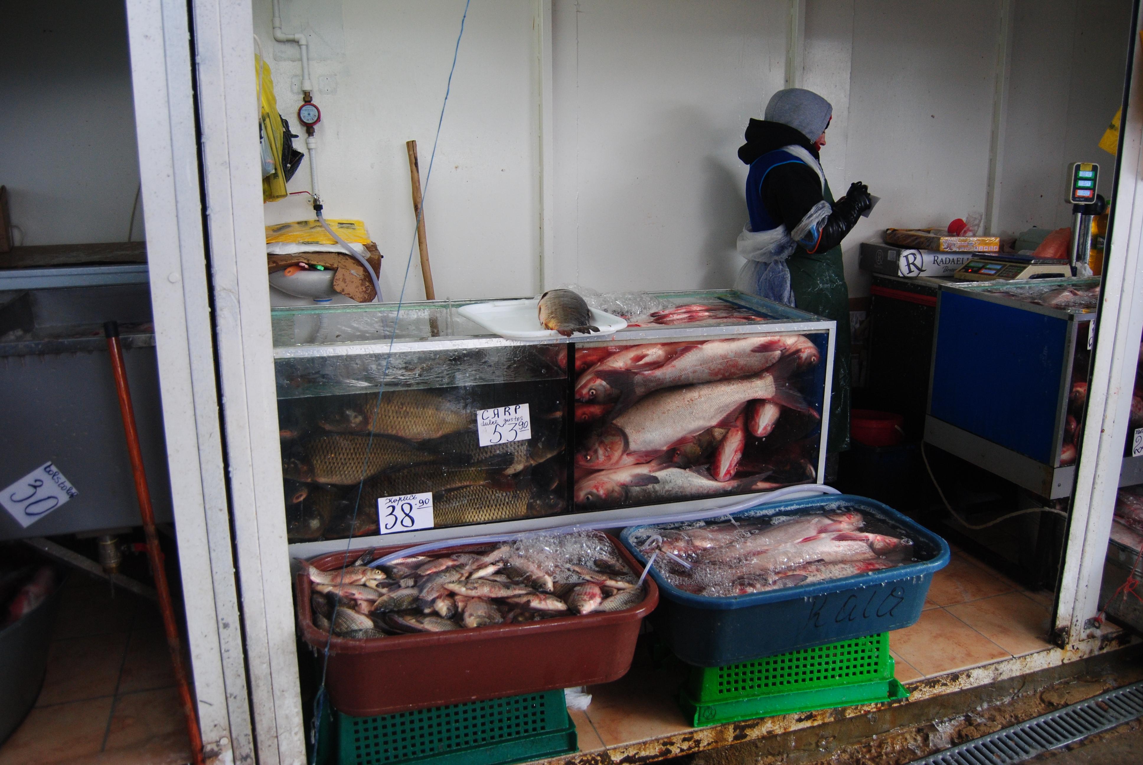 Mercado de pescado en Chisinau