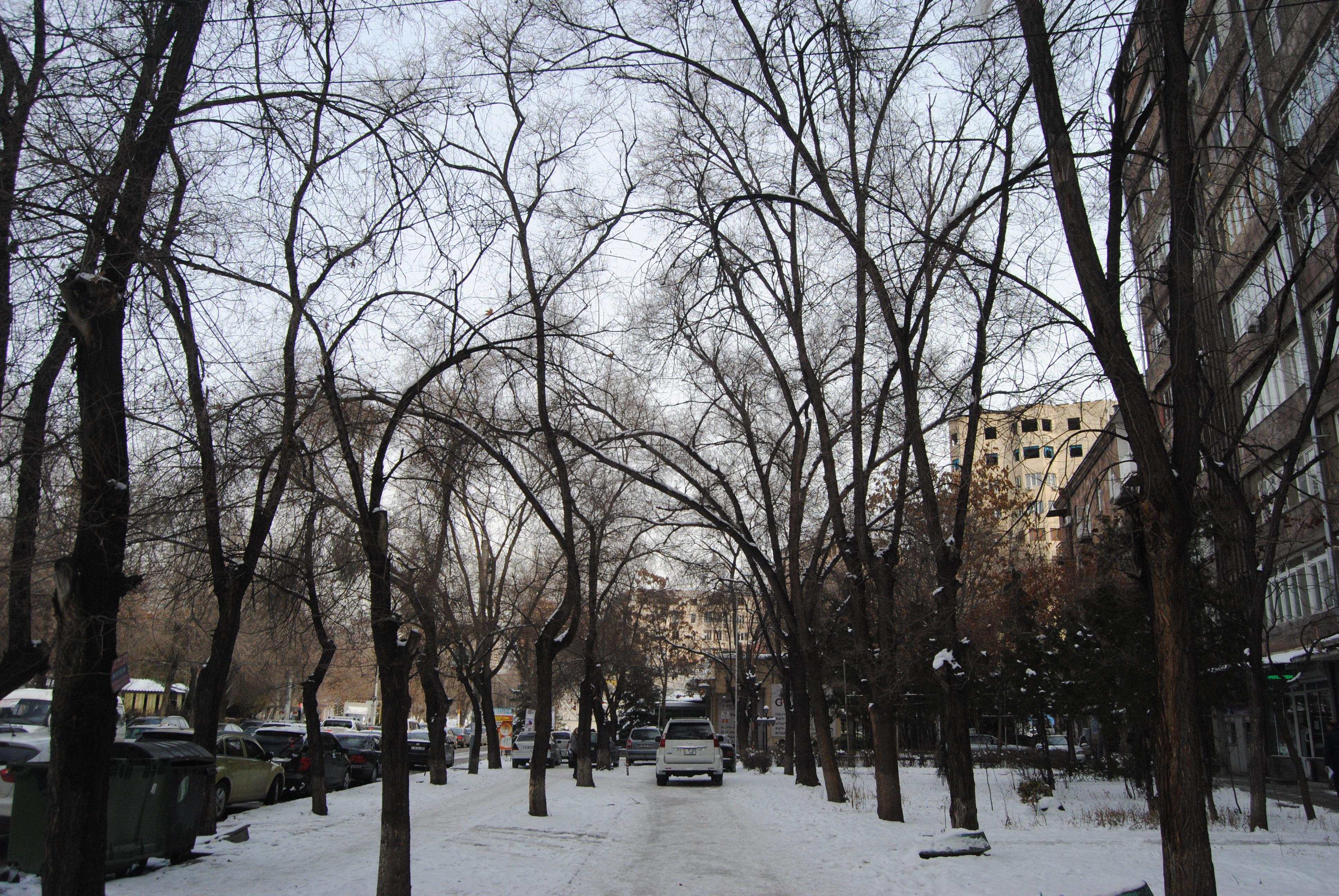 invierno en Ereván