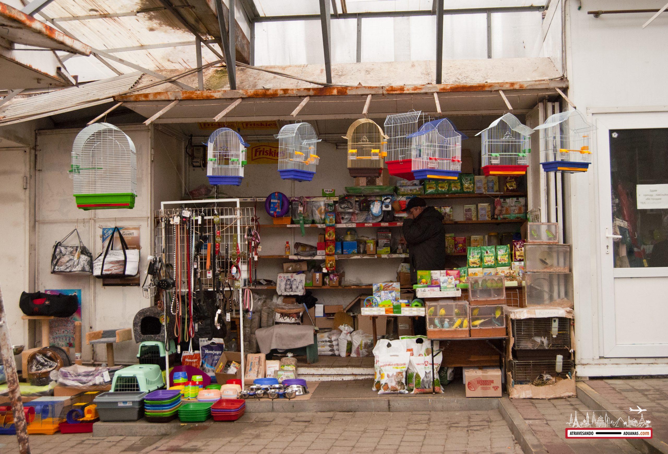 venta de pájaros en Lviv
